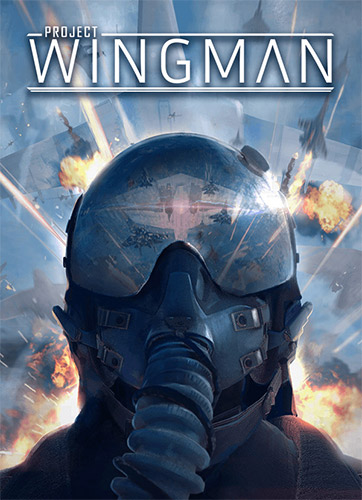 Project Wingman (2020)
